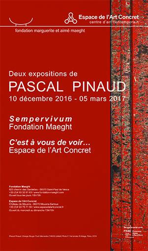 Pascal Pinaud, Expositions Espace del'art concret et Fondation Maeght